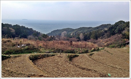 shingu014.jpg