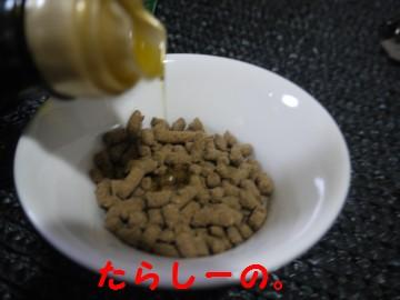 0127c.jpg