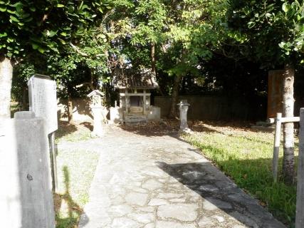 P1010001 2009-01-045
