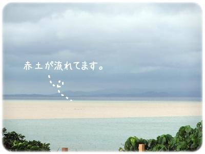 2012_02240002.jpg