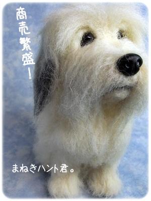2012_02290015.jpg
