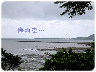 2012_05210025.jpg