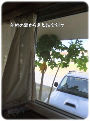 2012_07160004.jpg