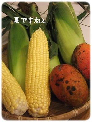 2012_08040001.jpg