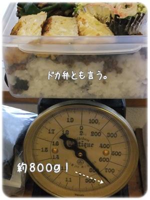 2012_08150010.jpg