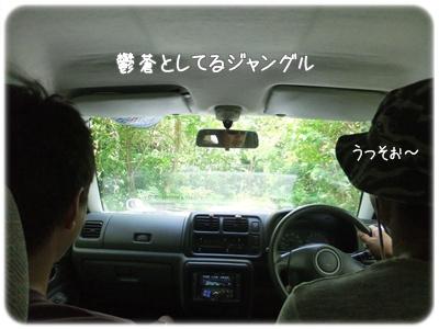 2012_09020011.jpg