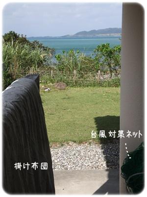 2012_10180010.jpg