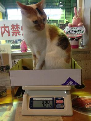2012-4ちよ体重