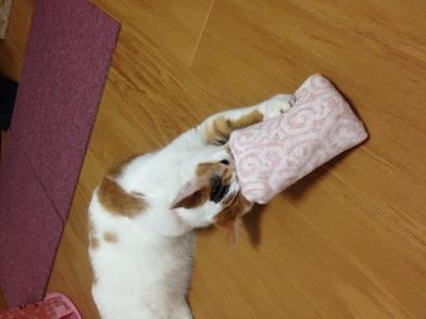ちよ保冷剤枕1