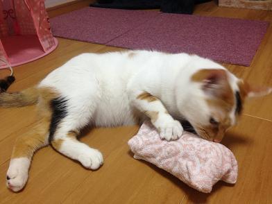 ちよ保冷剤枕a1
