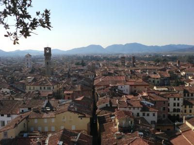 ルッカ グイニージの塔からの眺め2
