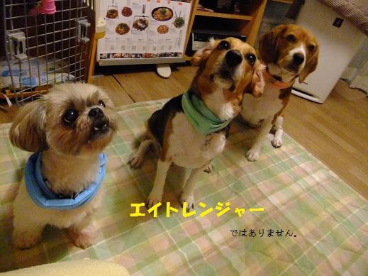 020_20120803235514.jpg