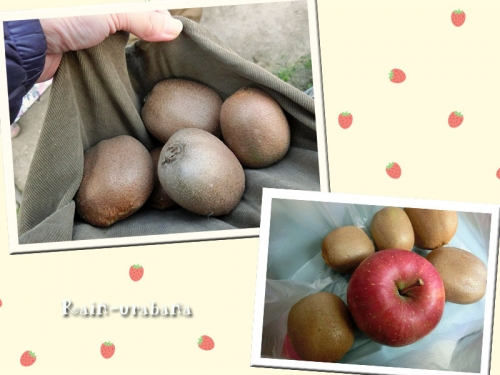 キウイを頂いたので...林檎を買って来た♪