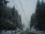 板取の初雪