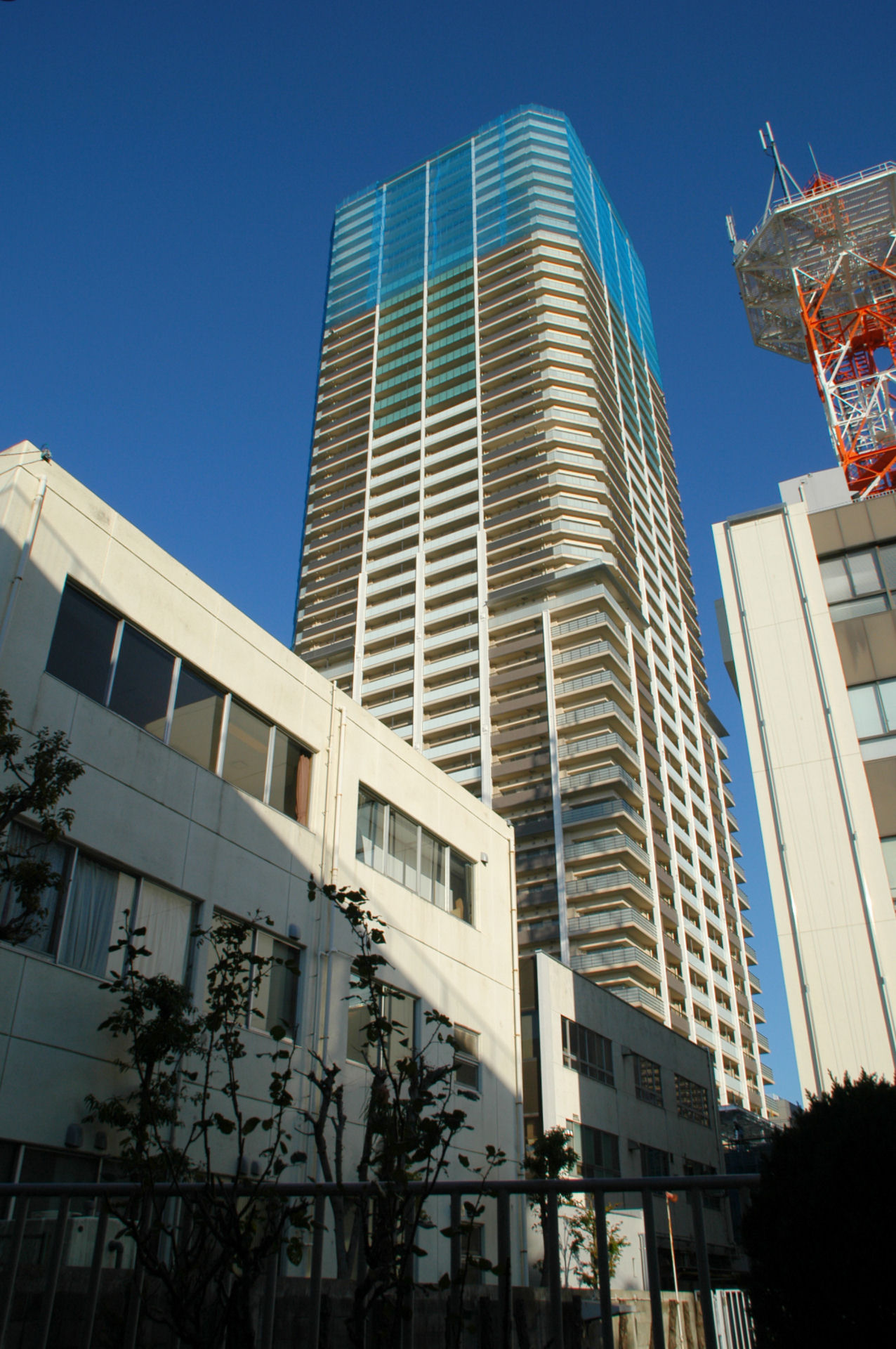 musakosu13120170.jpg