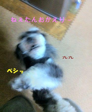 IMG_2144.jpg