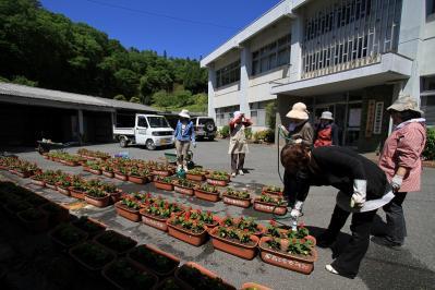 2010-05-29_EOS 7D_1456、「花いっぱい運動、神石高原商工会油木支部女性部」、2010.5.29.、油木、2