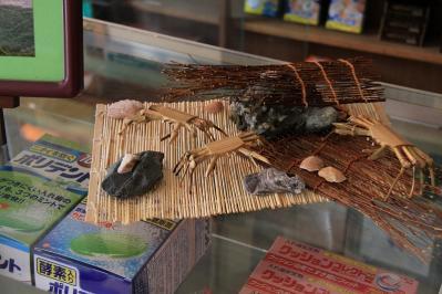 2010_06_23EOS 7D2878、「豊田さん製作の蟹」、2010.6.23.、井田、