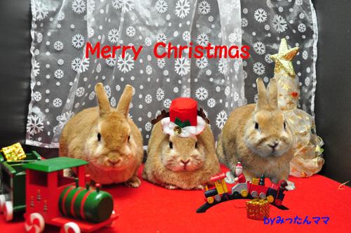 DSC_3405クリスマス-1