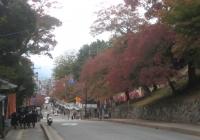 興福寺 南円堂前