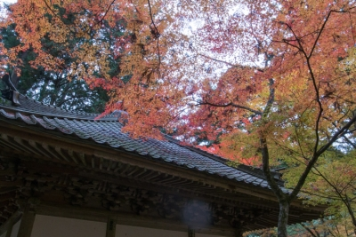 20131118_AutumnLeaves_ButtsuTemple_GRD4-1.jpg