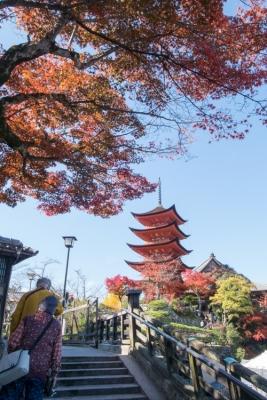 20131123_AutumnLeaves_Miyajima_GRD4-6.jpg