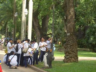 サイゴン動植物園-大群