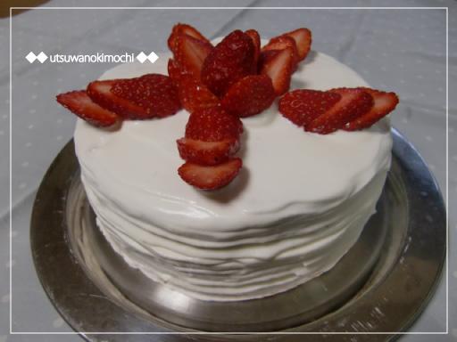 誕生ケーキ529_1