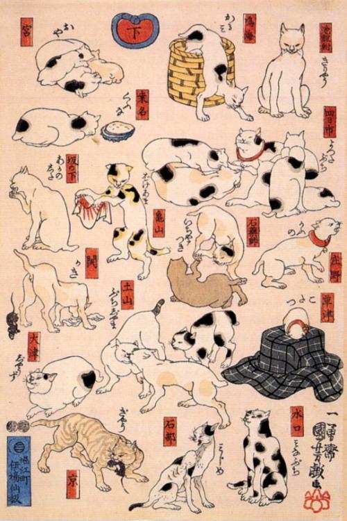 歌川国芳 『其のまま地口猫飼好五十三疋』  下(左)