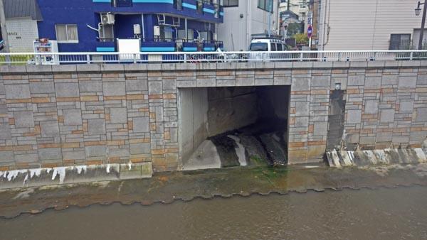 神田川と和泉川の合流点