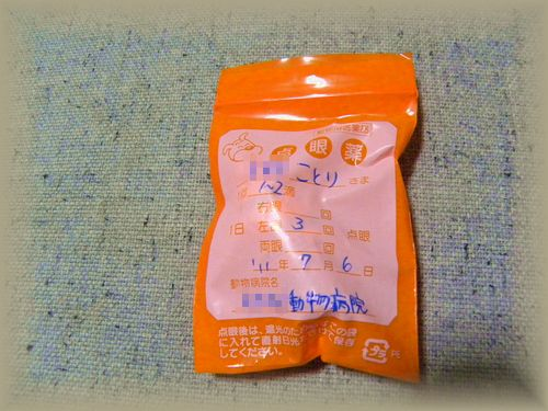 うずら・2011.7no1 009