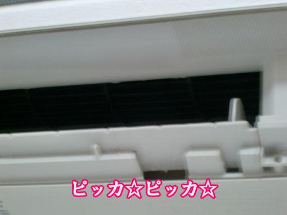 20100625_004.jpg