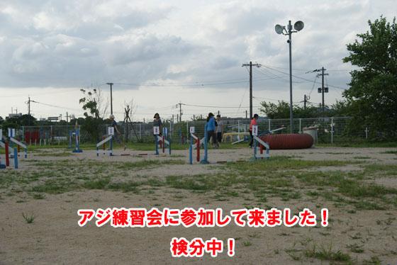 20100731_002.jpg