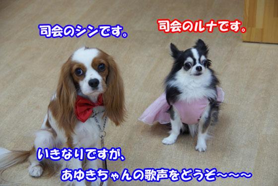 20100927_005.jpg