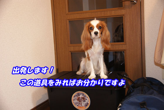 20101002_001.jpg