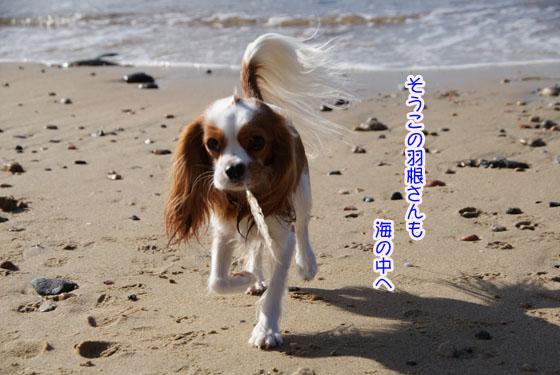 20101103_088.jpg