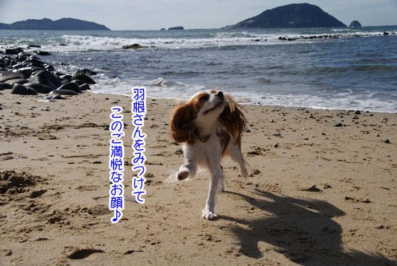 20101103_089.jpg