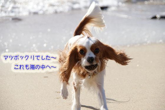 20101103_146.jpg