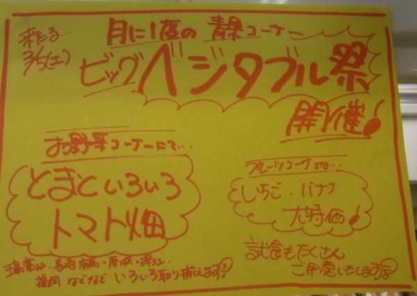 2011_0303_007.jpg