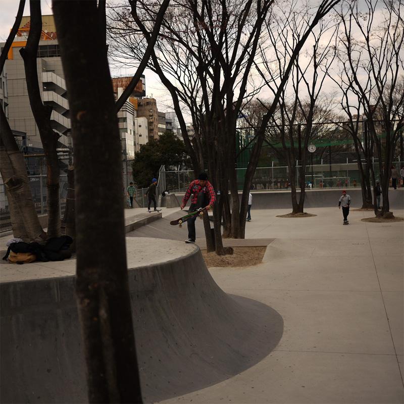 sat-miya-4.jpg