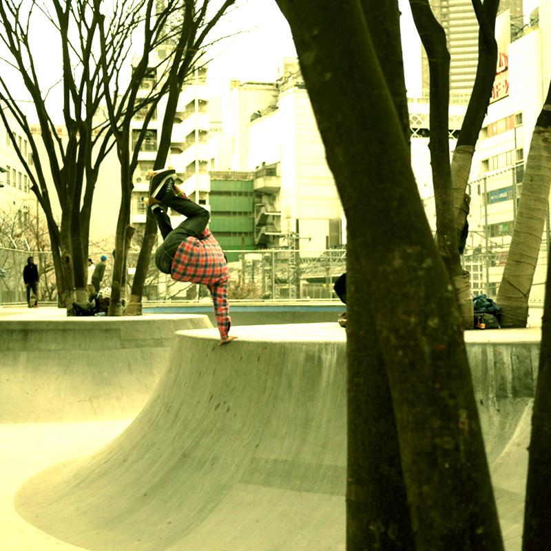 sat-miya-9.jpg