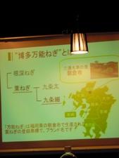 万能ねぎ講座3