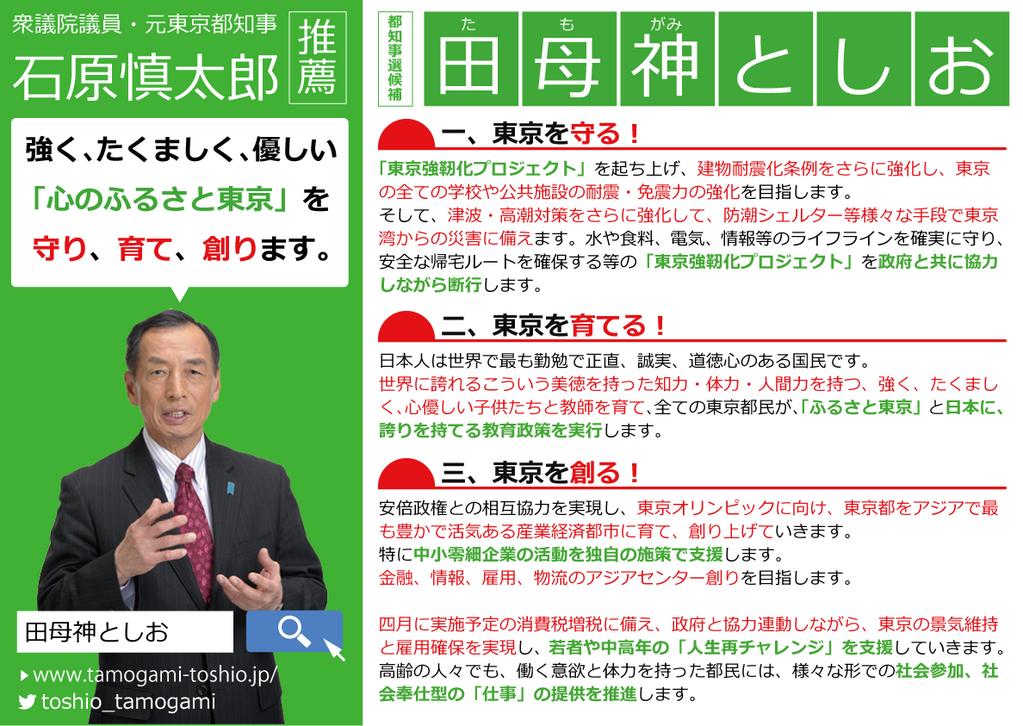 田母神俊雄 都知事選マニュフェスト