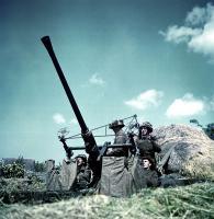 585px-Bofors-p004596.jpg
