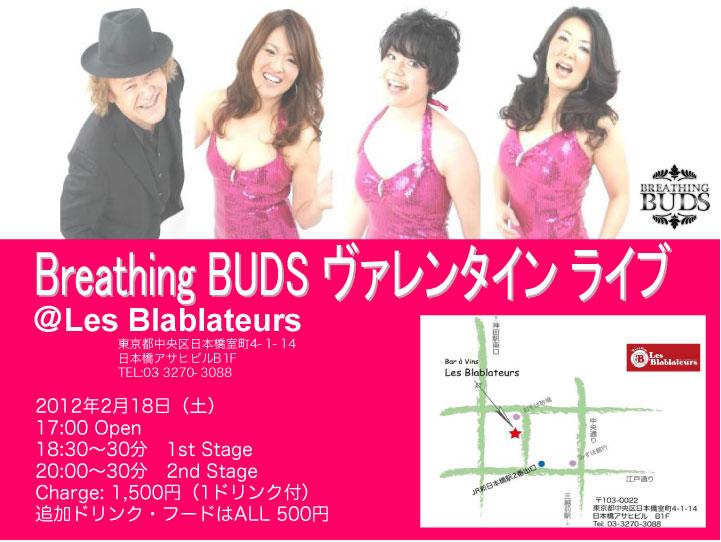 BUDflyer20120218-2.jpg