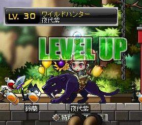 WH紫30レベ♪