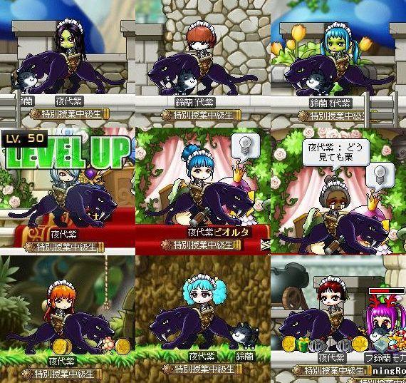 夜代紫11