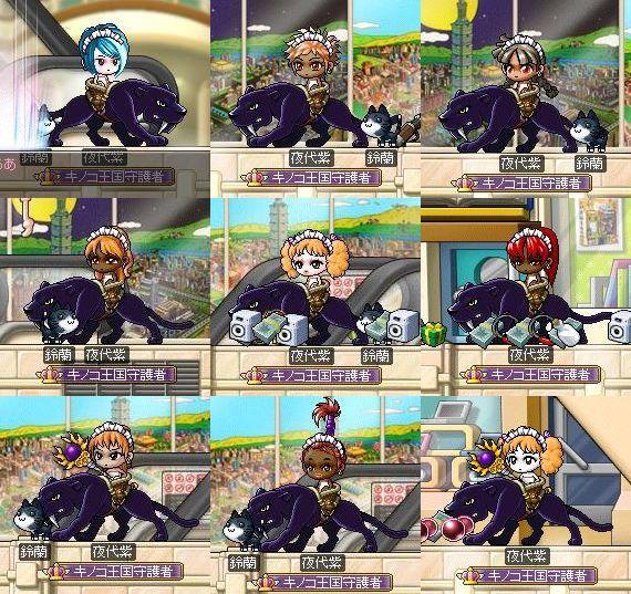 夜代紫13
