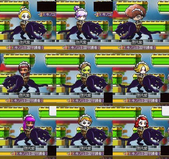 夜代紫16