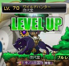 WH紫70♪